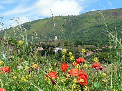 Le printemps est là - Commune d'Arignac Ariège (09)